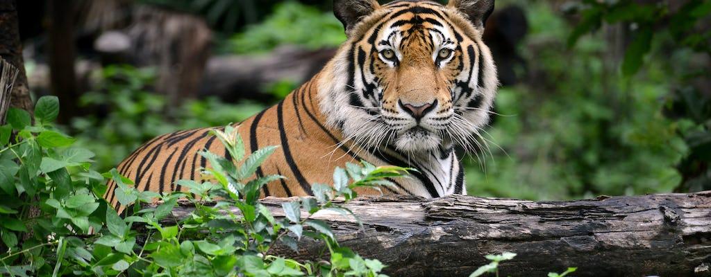 Karnataka Wildlife Tour