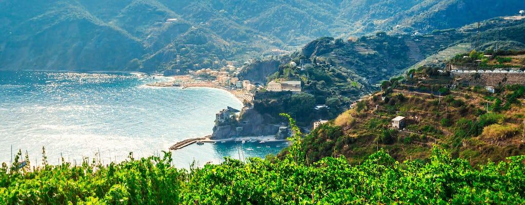 Tour del vino a Riomaggiore