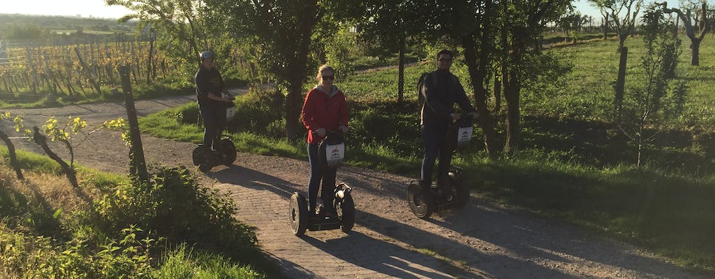 Self-balancing scooter tour in the surroundings of Heidelberg