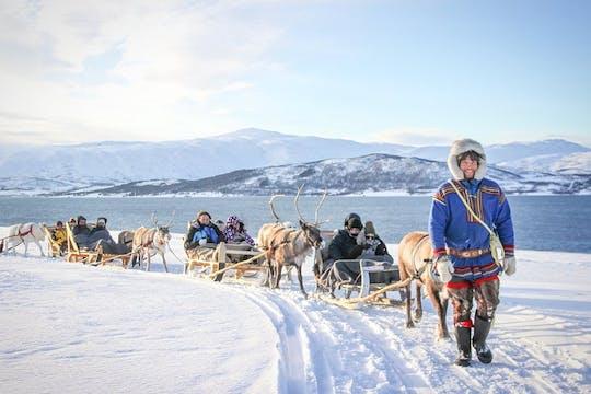 Giro in slitta di 30 minuti con un'esperienza culturale Sami