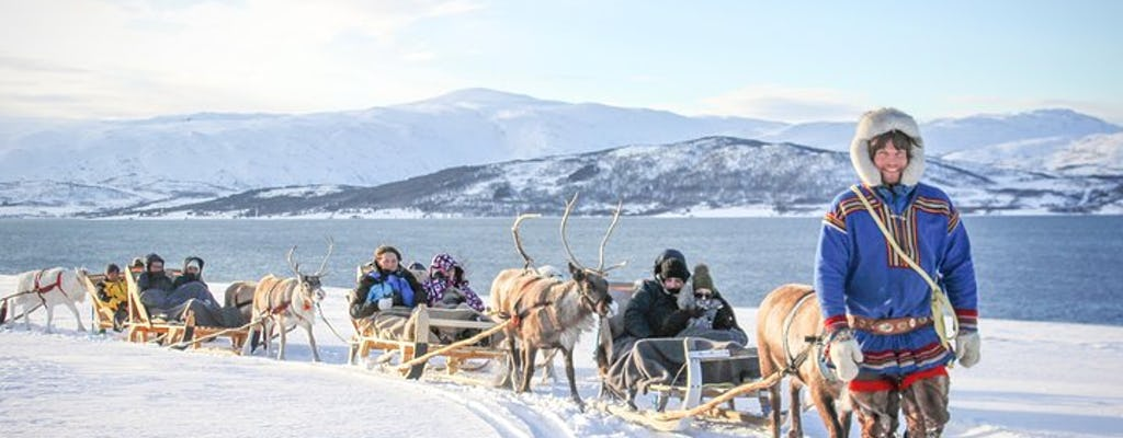 Sami culture experience with 15-minute reindeer sledding