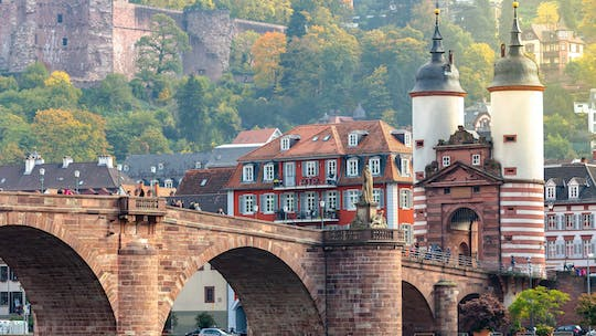 Heidelberg private walking tour with castle visit