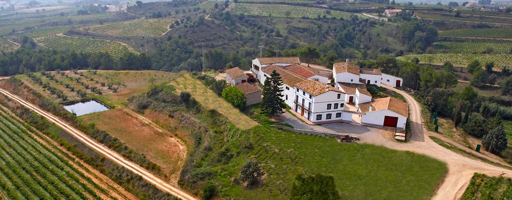Self-balancing tour through the Penedes wine region from Barcelona
