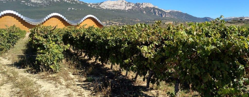 Tour di un'intera giornata a Rioja Alavesa, terra del vino