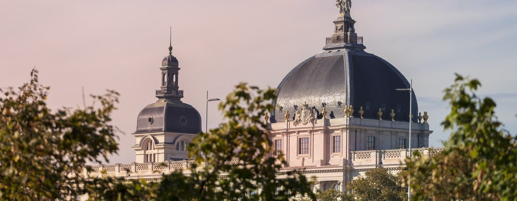 Private guided tour of the Grand Hôtel Dieu in Lyon