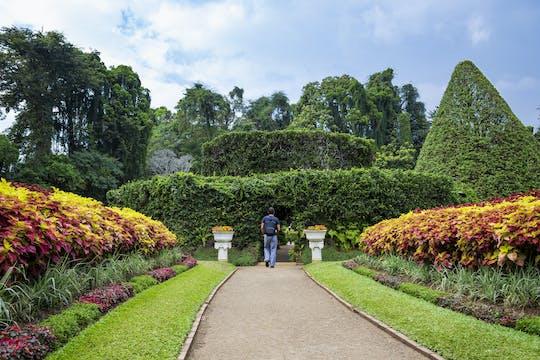 Excursion sur deux jours à Kandy, Sigiriya et Dambulla