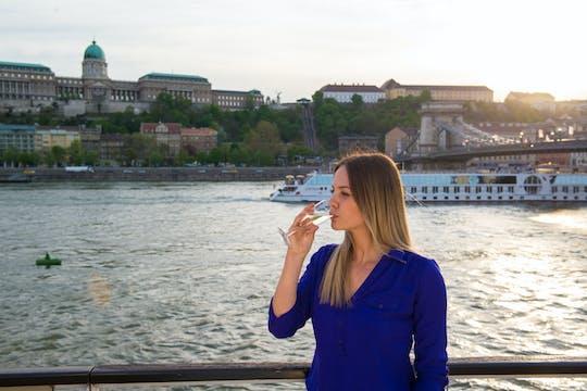 Donau-cruise met welkomstdrankje
