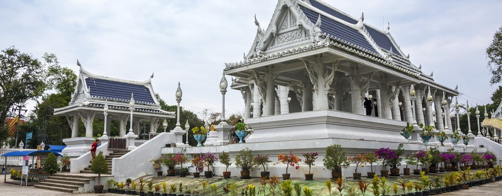 Krabi City and Temple Tour