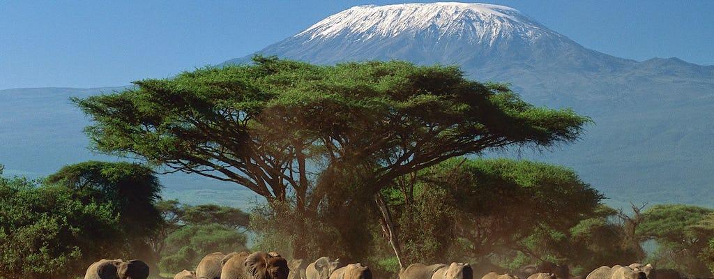 Tsavo, Taita and Amboseli 4-day safari