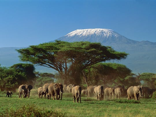 Tsavo, Taita and Amboseli 4-day safari