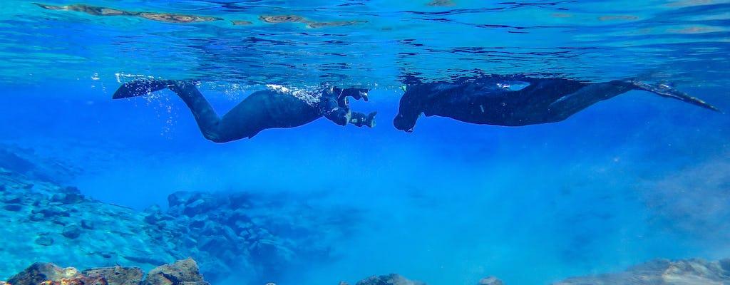 Snorkel between Continents in Silfra