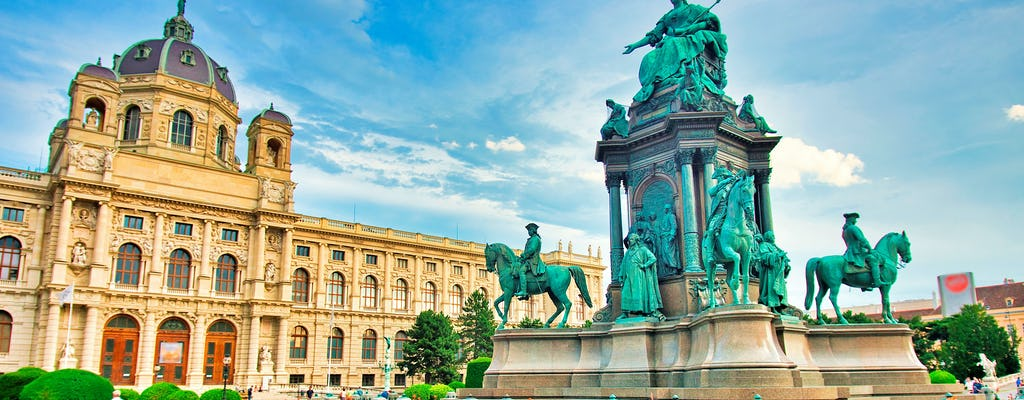 Private tour focused on beauty at Art History Museum Vienna
