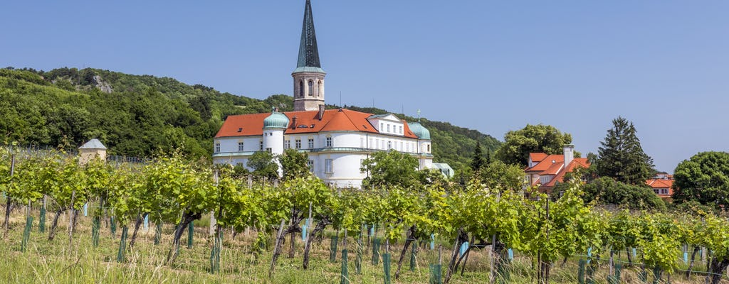 Vineyard walking and tasting tour from Vienna
