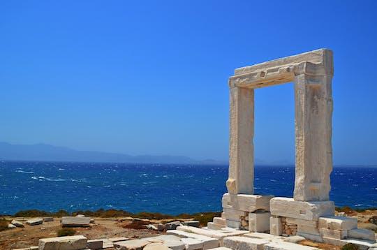 Experiencia de navegación privada en Mykonos: Delos, isla de Rhenia y costa sur