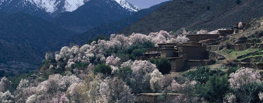 Excursión de un día al valle de Ourika con caminata incluida desde Marrakech