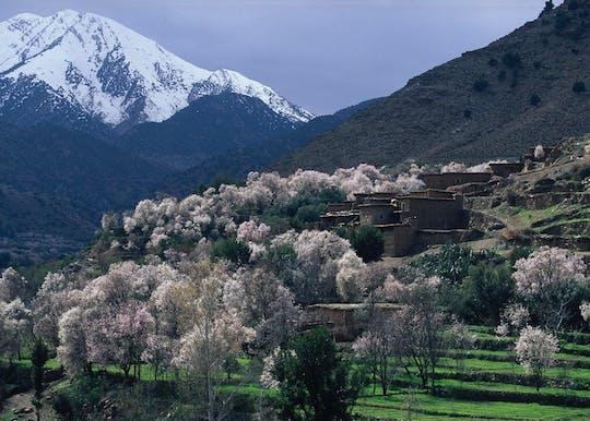 Dia de viagem ao Vale Ourika com caminhada incluída a partir de Marrakech