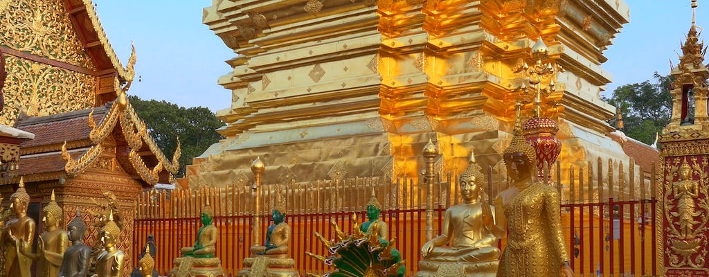 Chiang Mai City and Temples-tour