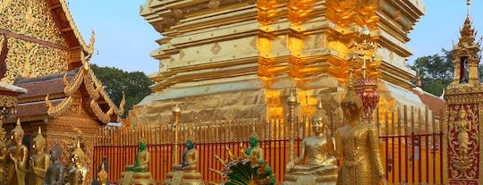 Chiang Mai City and Temples tour