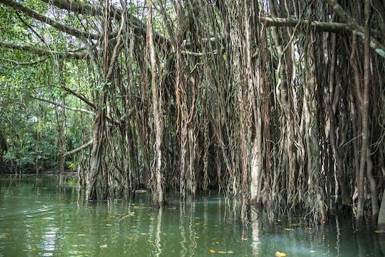De Verloren Wereld van Little Amazon & Oude Stad van Khao Lak