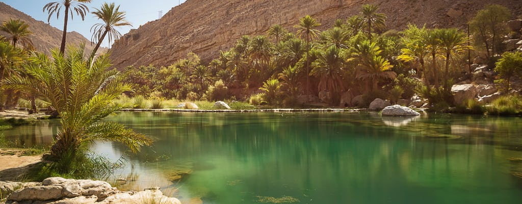 Viagem privada de um dia de safári nas dunas vermelhas saindo de Muscat