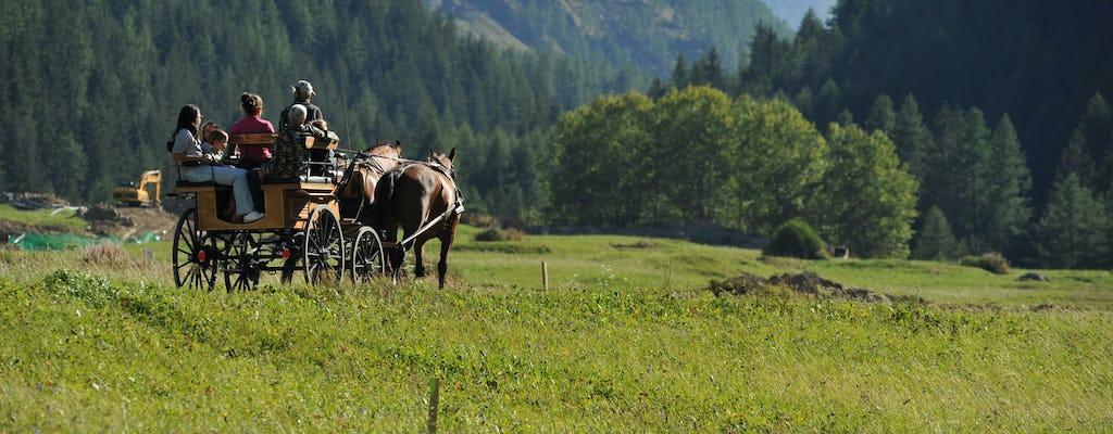 Giro in slitta trainata da cavalli o in carrozza nel Parco del Gran Paradiso
