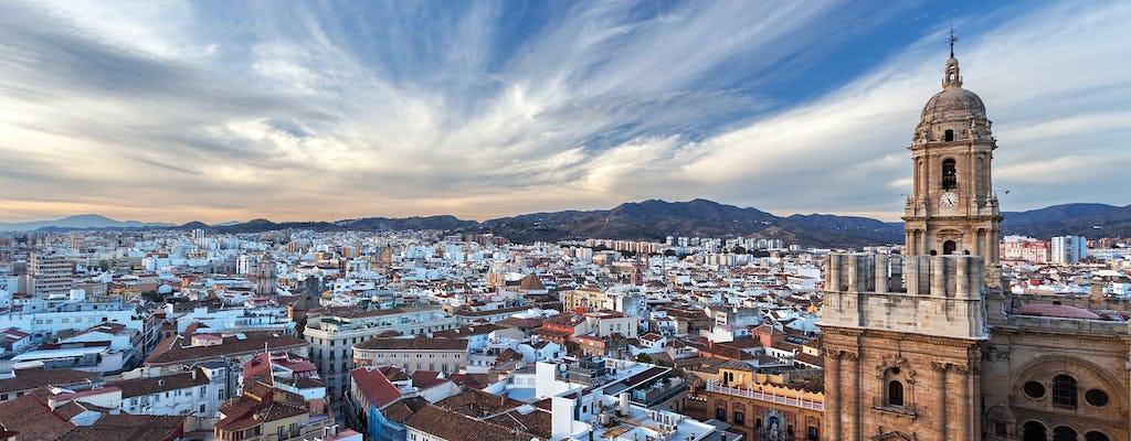 Tour privato di Malaga con flamenco e spettacolo di musica dal vivo