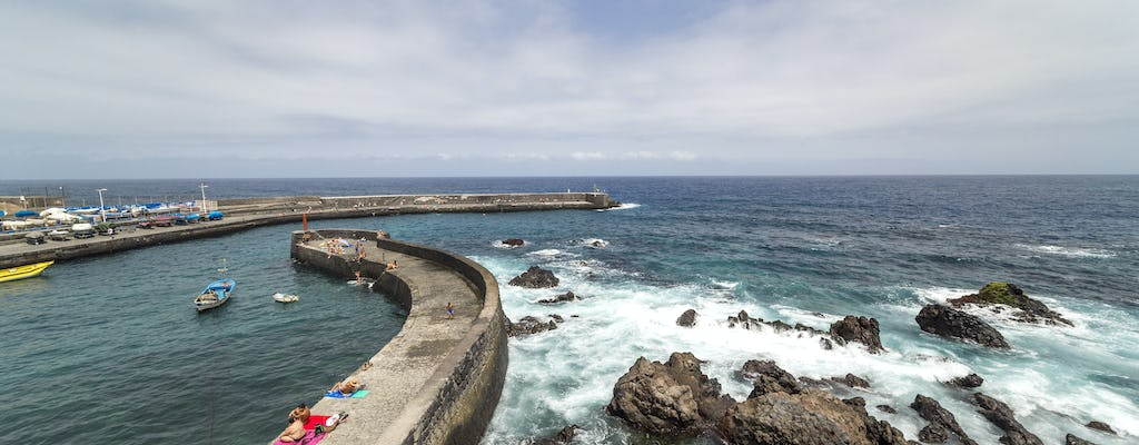Tenerife Island Tour – from the North