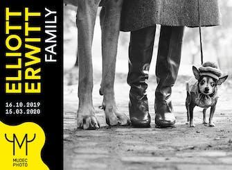 "Biglietti per la mostra fotografica ""Elliott Erwitt. Family"" al Mudec"