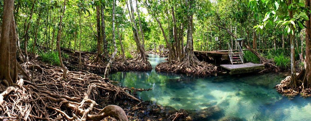 Мангровые леса и пещеры экскурсия
