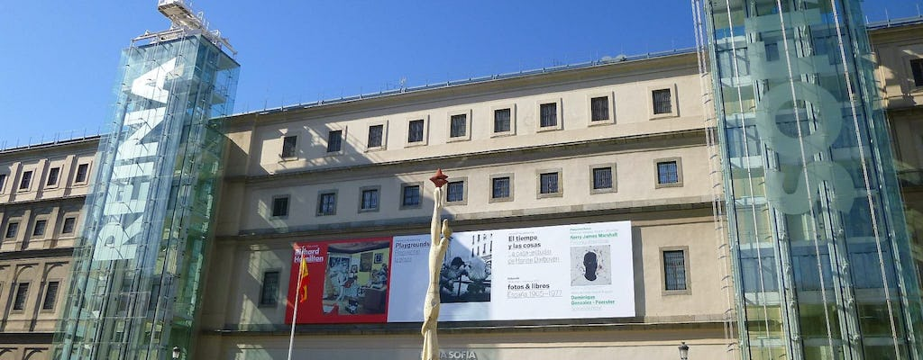 Reina Sofía Museum private tour with skip-the-line tickets