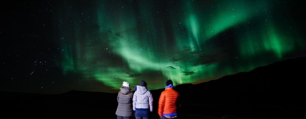 Iceland caves, golden circle and northern lights combo day-tour