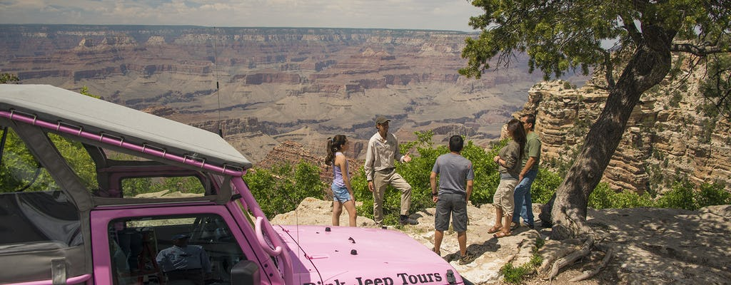 The Grand Canyon desert view tour