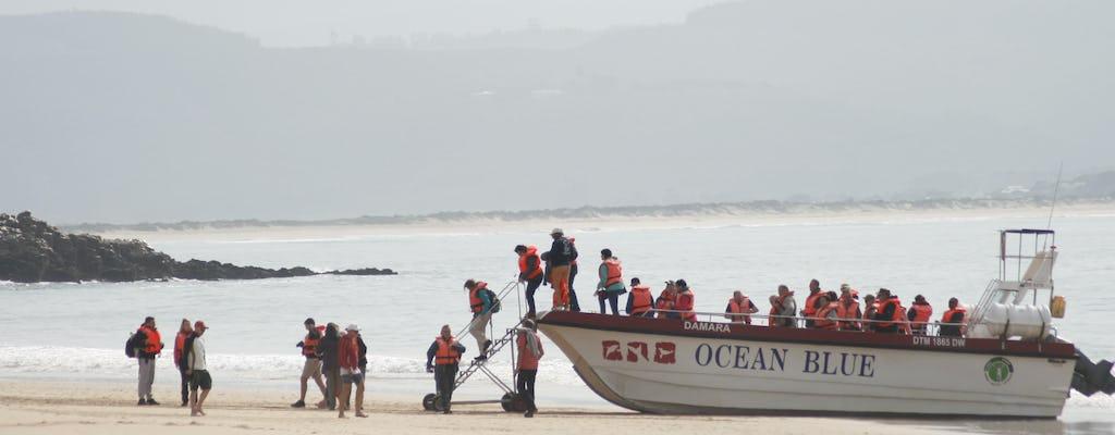 Bootsfahrt und Delfinbeobachtung