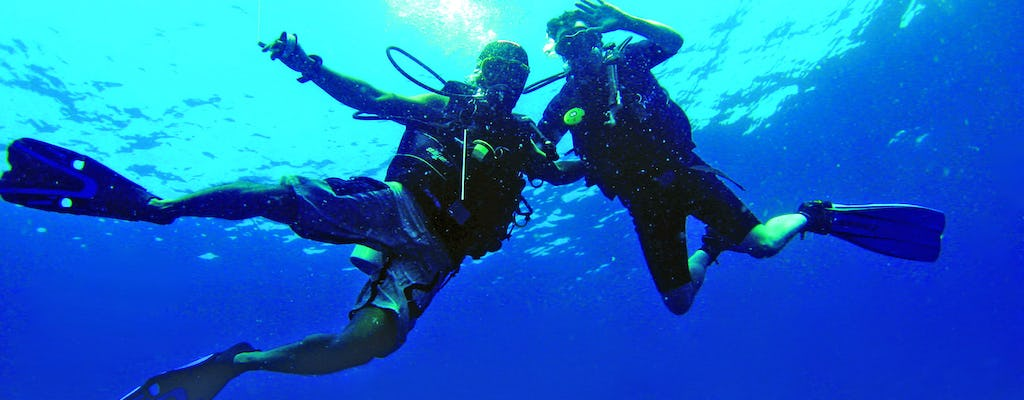 Scuba Diving in St Nick's Beach