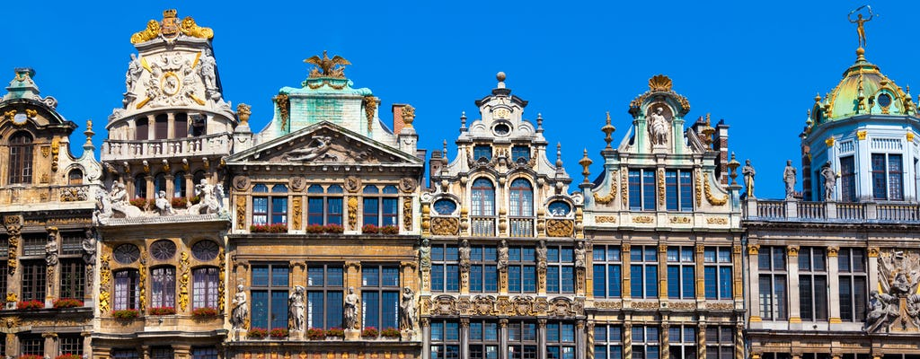 Private walking tour in Brussels