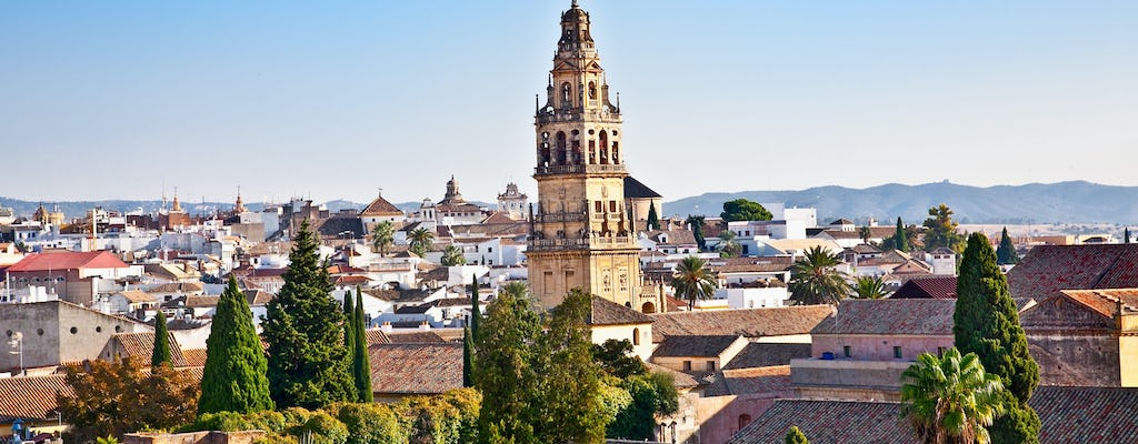 Full day trip to Córdoba from Seville