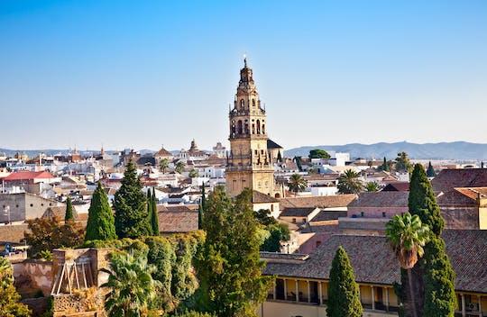 Excursion d'une journée à Cordoue au départ de Séville