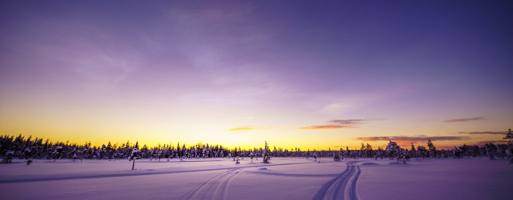 Rovaniemi Snowmobile Day Tour