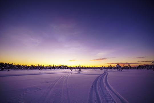 Saariselka Snowmobile Day Tour