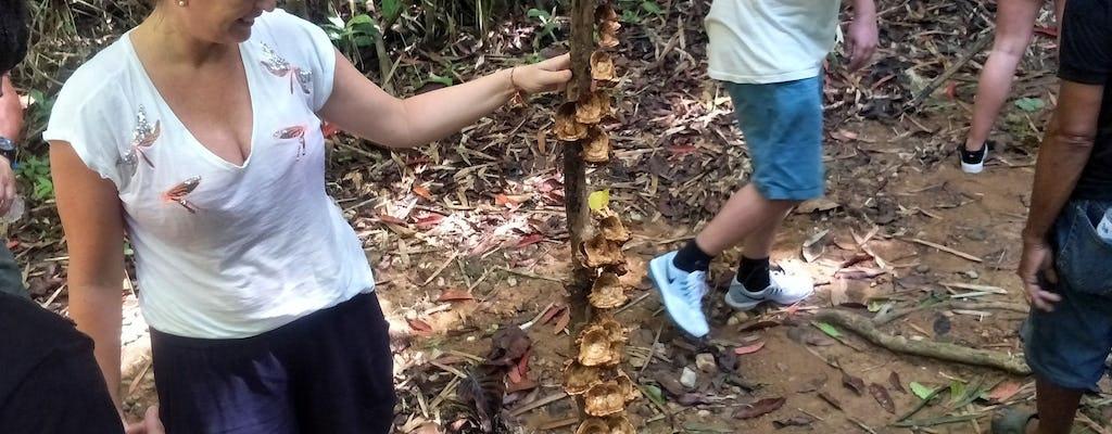 Trekking przez dżunglę w Phuket