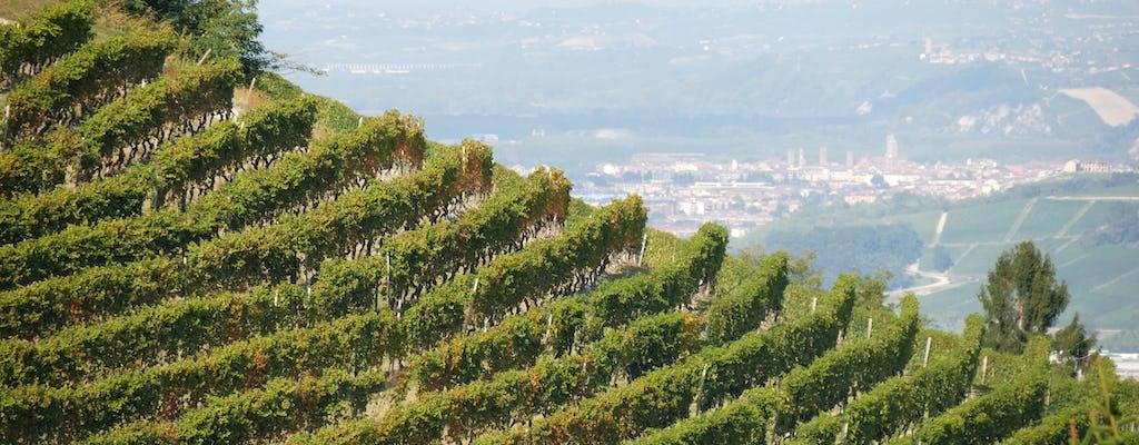 Visita a la bodega y viñedos de Monferrato con degustación de vinos.
