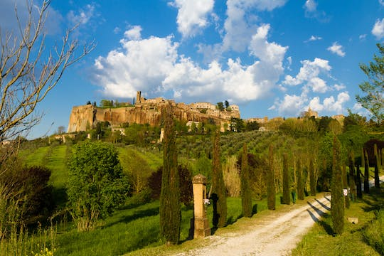 Day tour of Orvieto from Rome with wine tasting and lunch