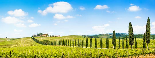 Chianti tour with two wine tastings from Florence