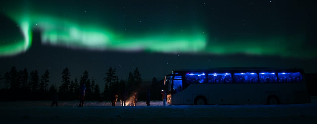 Northern lights chase by bus from Tromso