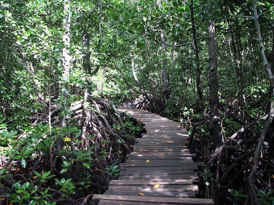 Jozani Chwaka Bay Nationaal Park & Kruidentour