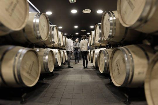 Visita de 2 dominios de viñedos y degustación de vinos de Saint-Emilion