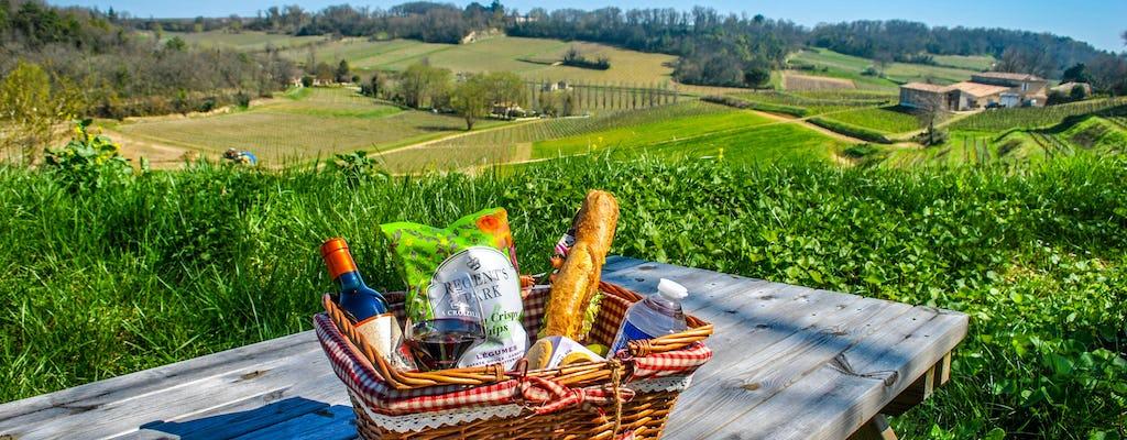 Визит, дегустация вина и корзинку для пикника в Санкт-Эмильон
