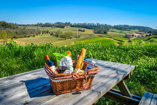 Visit, wine tasting and picnic basket in Saint-Emilion vineyards