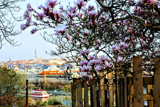 Self-guided discovery walk in Prague with breathtaking views and parks