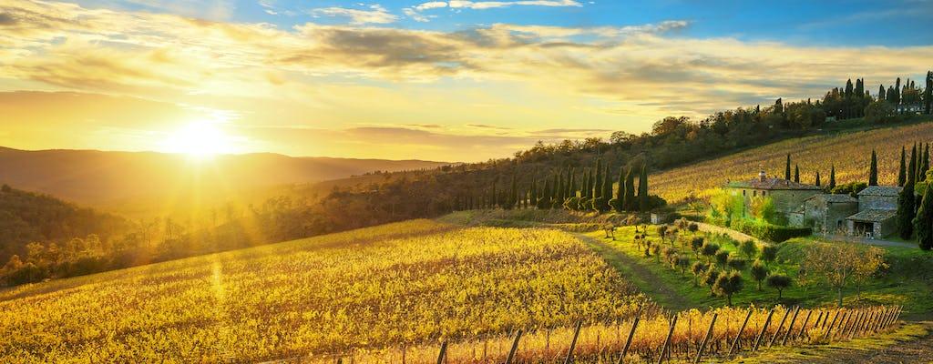 Tour de los paisajes de la Toscana, castillos y el distrito vinícola de Chianti